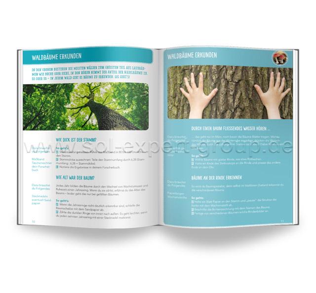 Experimente für Waldforscher